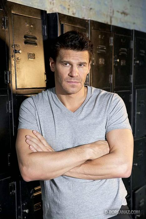 David boreanaz's dick