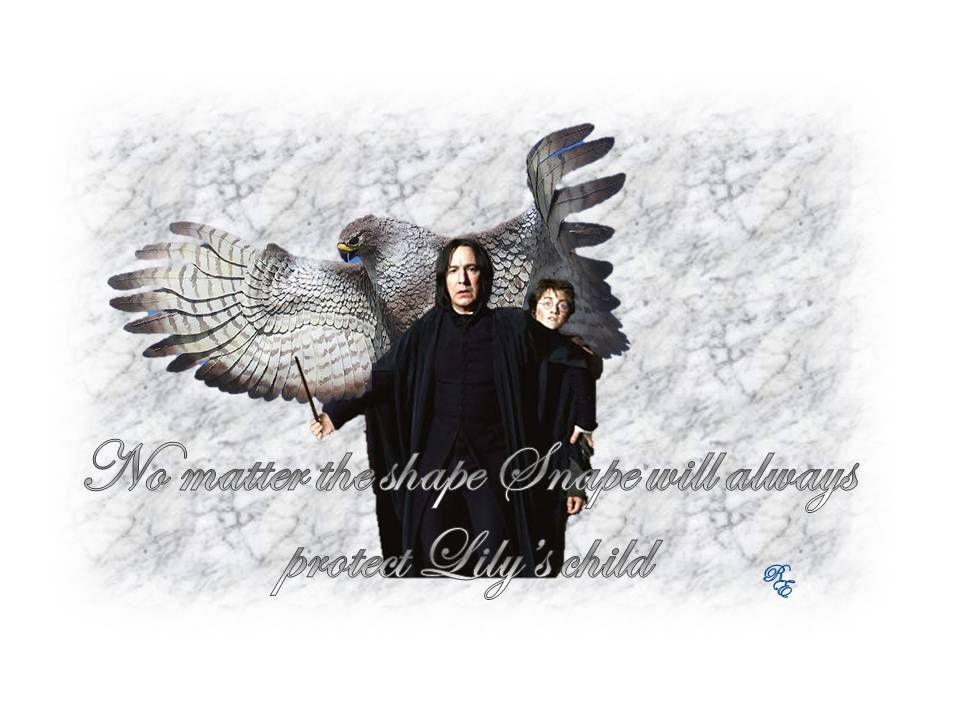Harry Potter Severus Snape Fanfiction Broken Wings By Snapegirl Kmf Http Www Fanfictio Severus Snape Fanfiction Snape Fanfiction Harry Potter Severus Snape