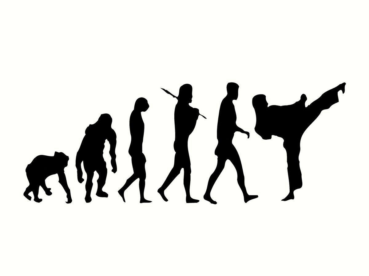 TAEKWONDO KARATE MARTIAL ARTS  EVOLUTION  T SHIRT