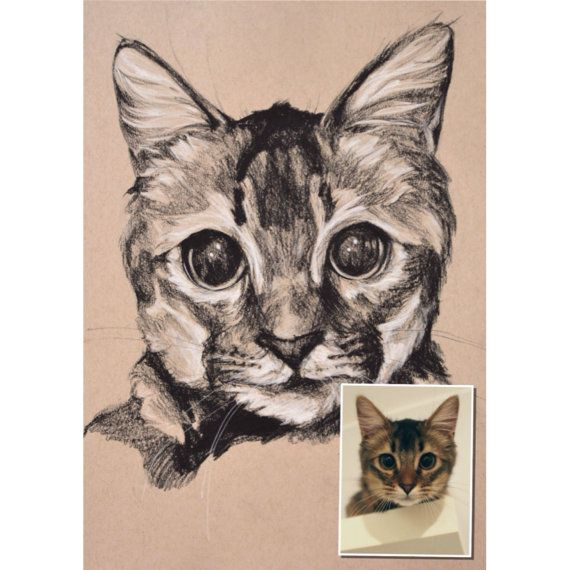 9x12 CUSTOM Pet Portrait from Photo in Charcoal by rousmouse, $65.00