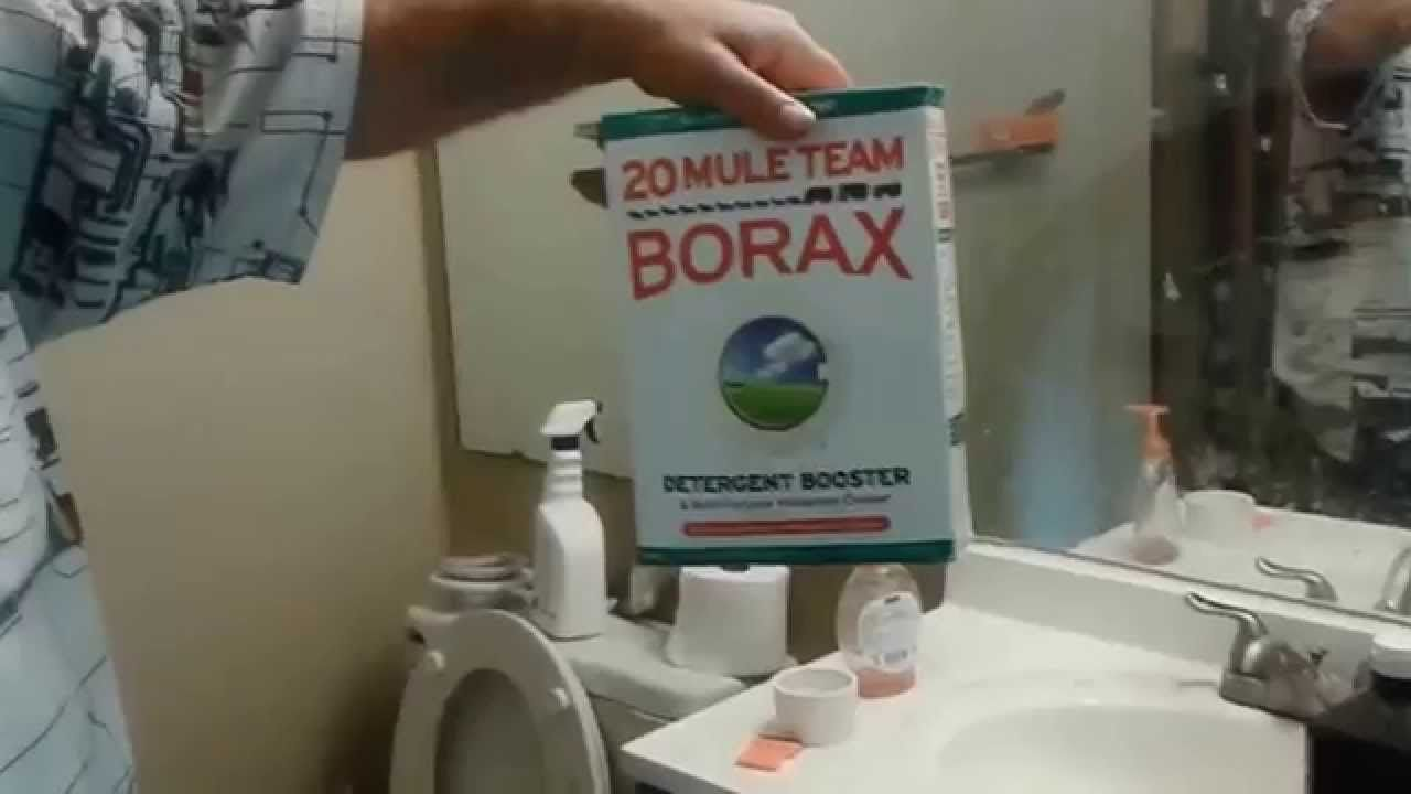How To Get Rid Of Termites For Good Using Borax Best