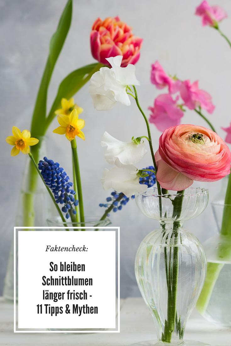 Faktencheck So Bleiben Blumen Frisch 11 Tipps Mythen Preis De