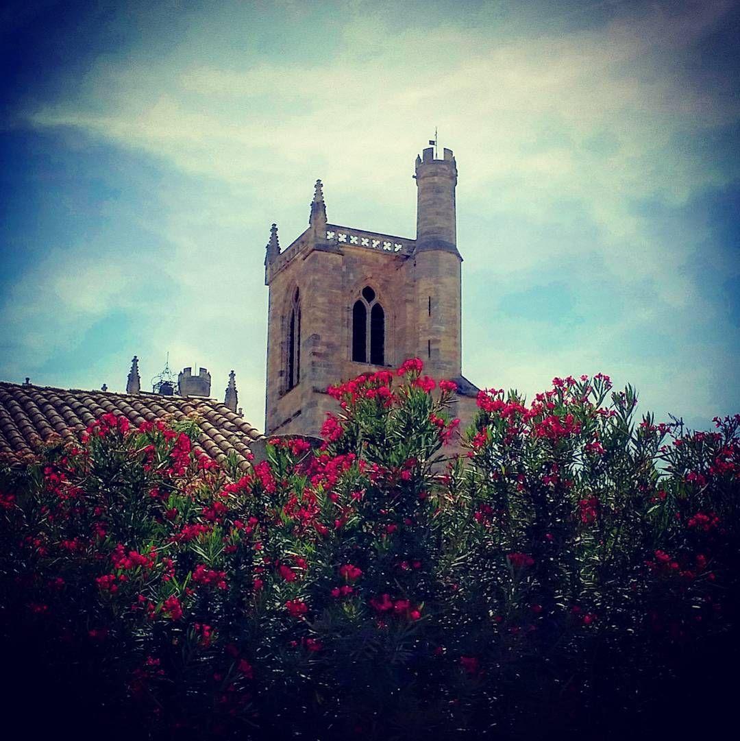 #Latergram / #Clocher de la #cathédrale Saint-Just & Saint-Pasteur de #Narbonne #aude #audetourisme #jaimelaude #TourismeOccitanie #Occitanie #architecture #architectureporn #instarchitecture #clochersdefrance #église #church #fleurs #flowers #instaflower #ciel #sky #instasky