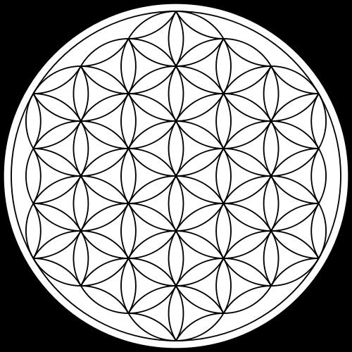 Heilige Geometrie und die Blume des Lebens: Die physikalische