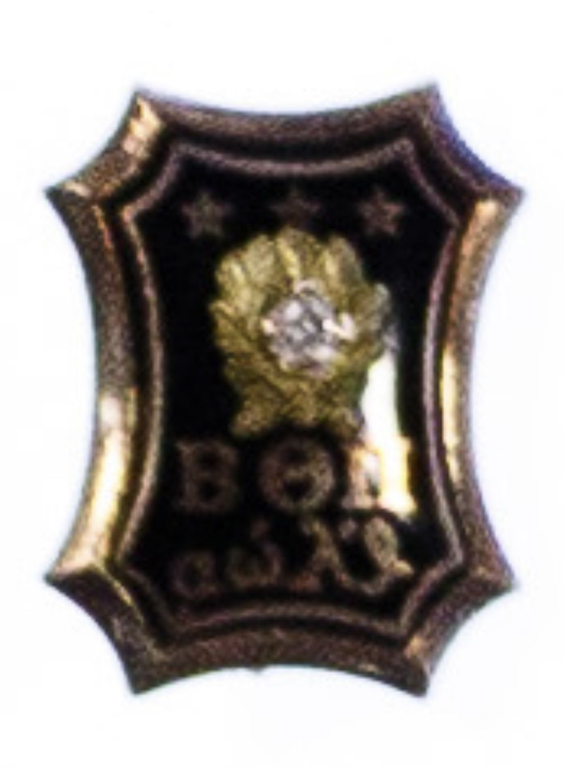 Pin by Christopher Walters on Greek letter society badges