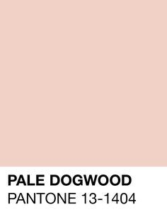 pantone 13 1404 tpx pale dogwood rgb 239 209 198 hex. Black Bedroom Furniture Sets. Home Design Ideas
