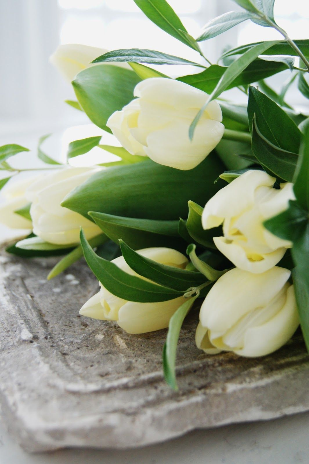 #flowers Get wowed with an amazing bouquet: http://www.bloomsybox.com/