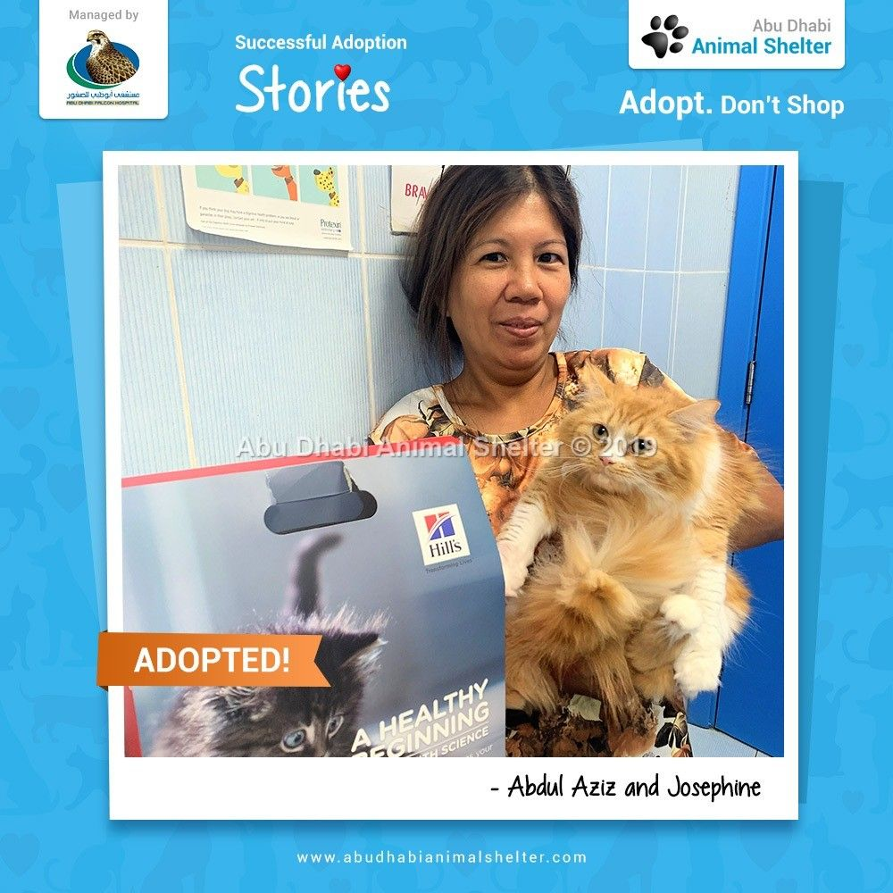 Thank You Abdul Aziz And Josephine For Visiting And Adopting From Adas We Wish You The Best Of Luck With Your New Kit Animal Shelter Adoption Stories Dog List