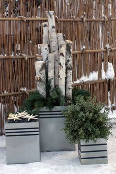Explore Christmas Urns, Modern Christmas Decor, and more!