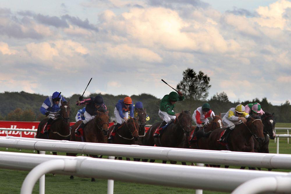 Betting gods horse racing gurus planet 365 live betting odds