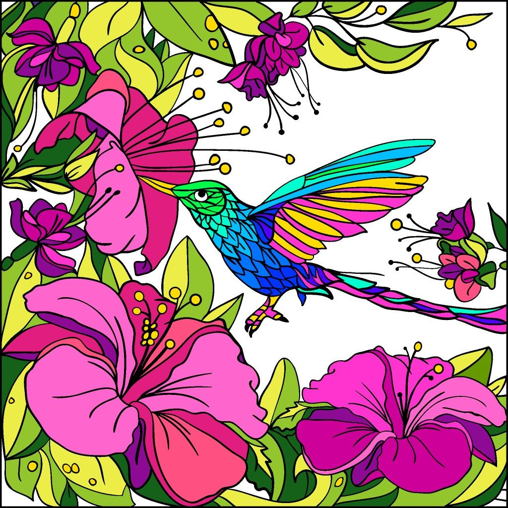420 Paint By Number Coloring Book App Picture HD