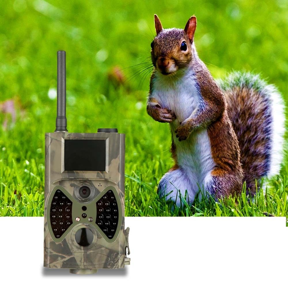 "Hi buddy! Spring is a big season for animals to go out! So if you are big of animals, you really need this #HuntingCamera to ""MONITOR"" them!   http://www.tomtop.cc/UzaYri"