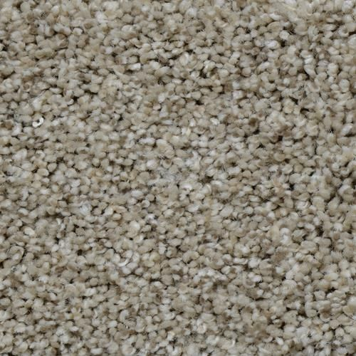 Search Results Carpet Samples Home Decorators Collection Rugs