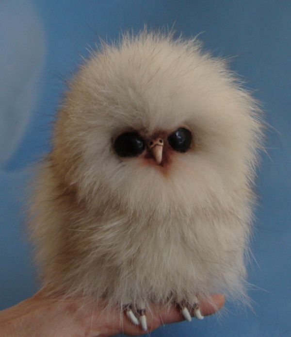 Tundra Recycled Fox Fur Baby Owl Owlet Cute Baby Owl