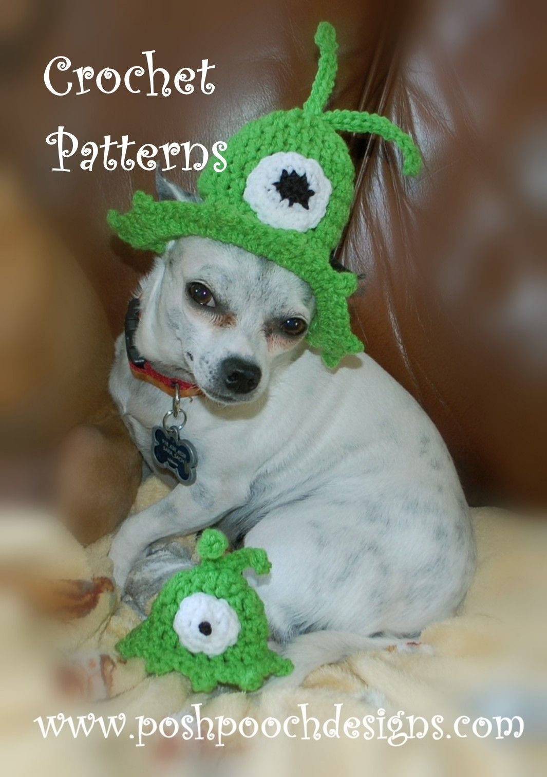 Posh Pooch Designs Dog Clothes: Brain Slugs! | Pet crafts | Pinterest