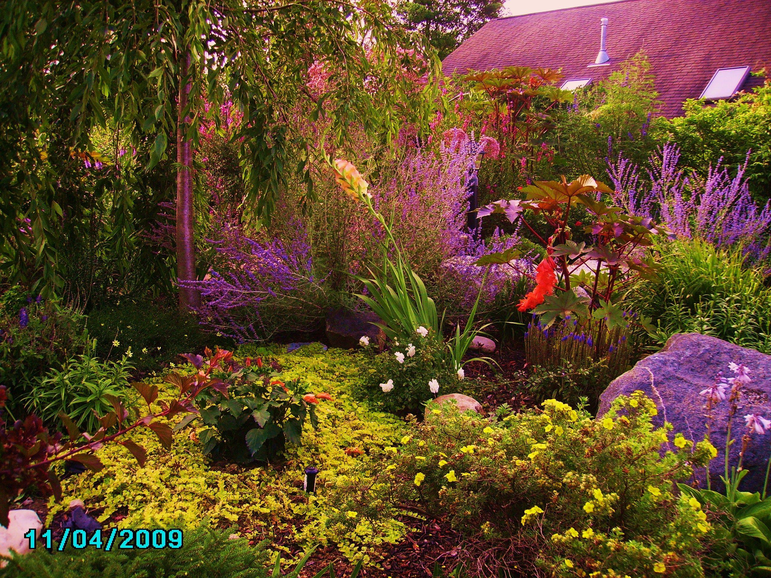 SoSerene Gardens great for bridal photos | 1 | Pinterest