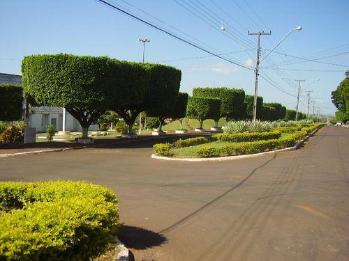 Cafeara Paraná fonte: i.pinimg.com