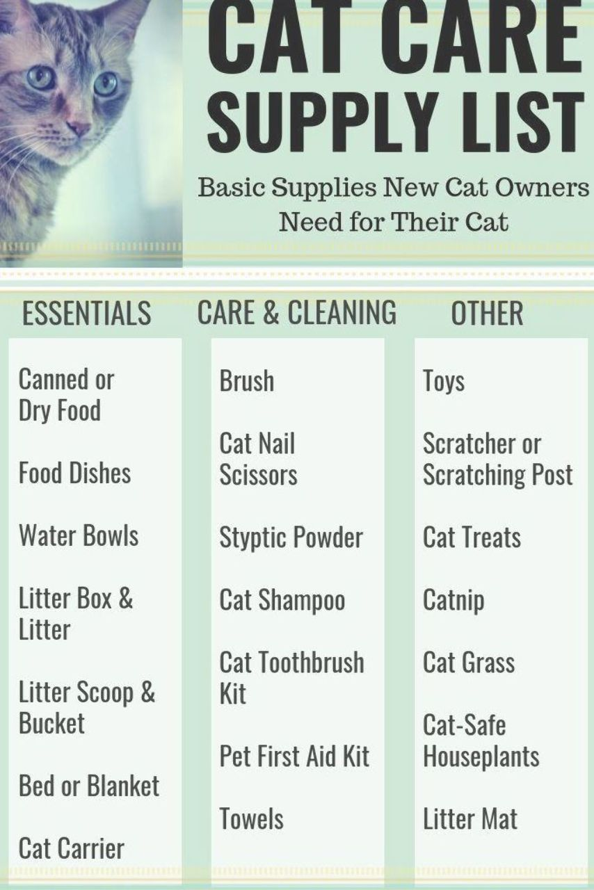 Cat Care Supplies List A List Of Some Basic Supplies And Other Items New Cat Owners Need For Their Cat Cats Pets Cat Supplies List Pet Supplies Cat Care