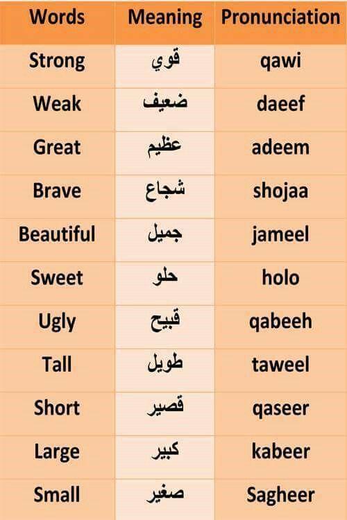 Arabic …   Arabic   Learn…