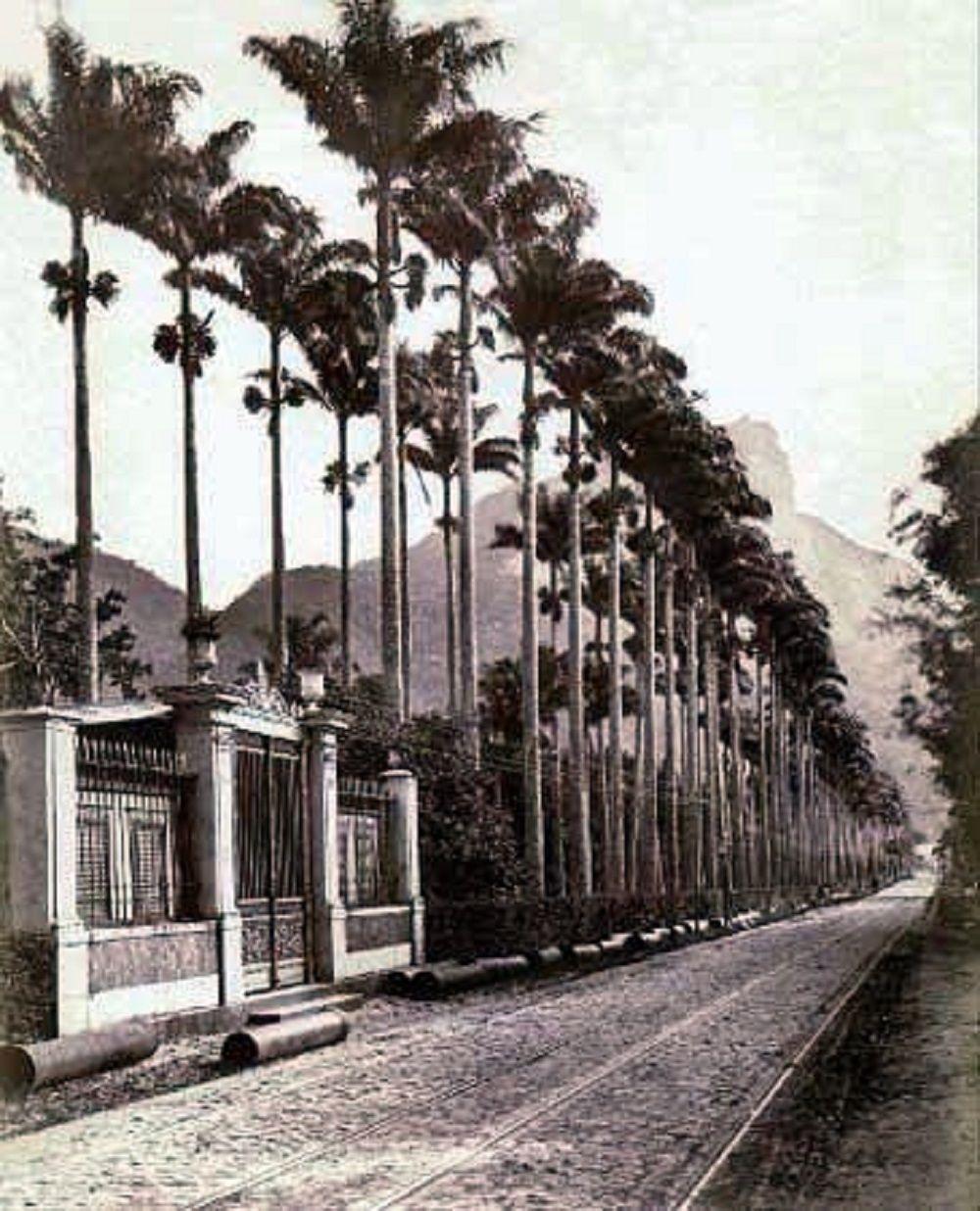 Rua Jardim Botânico. 1894.  https://www.facebook.com/Guarantiga/photos/a.490233921007939.115673.490210317676966/1001904876507505/?type=1&theater
