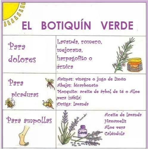 Pin De La Palmera En Proyecto De Herboristeria Herboristeria Remedios Caseros Picaduras