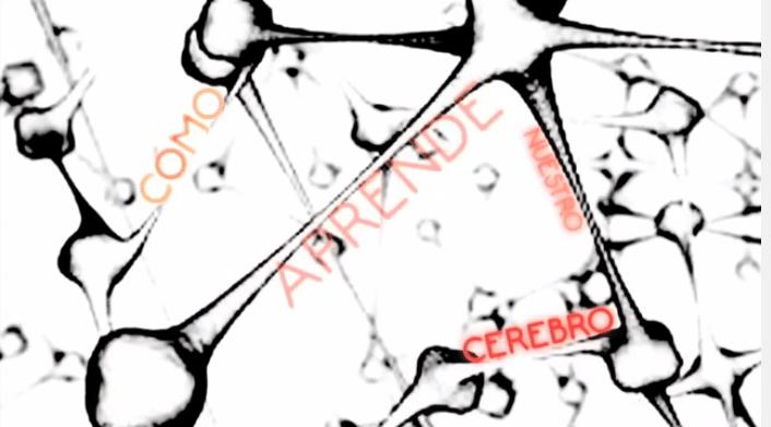 U00bfc U00f3mo Aprende Nuestro Cerebro   U2013 Dos Videos S U00faper