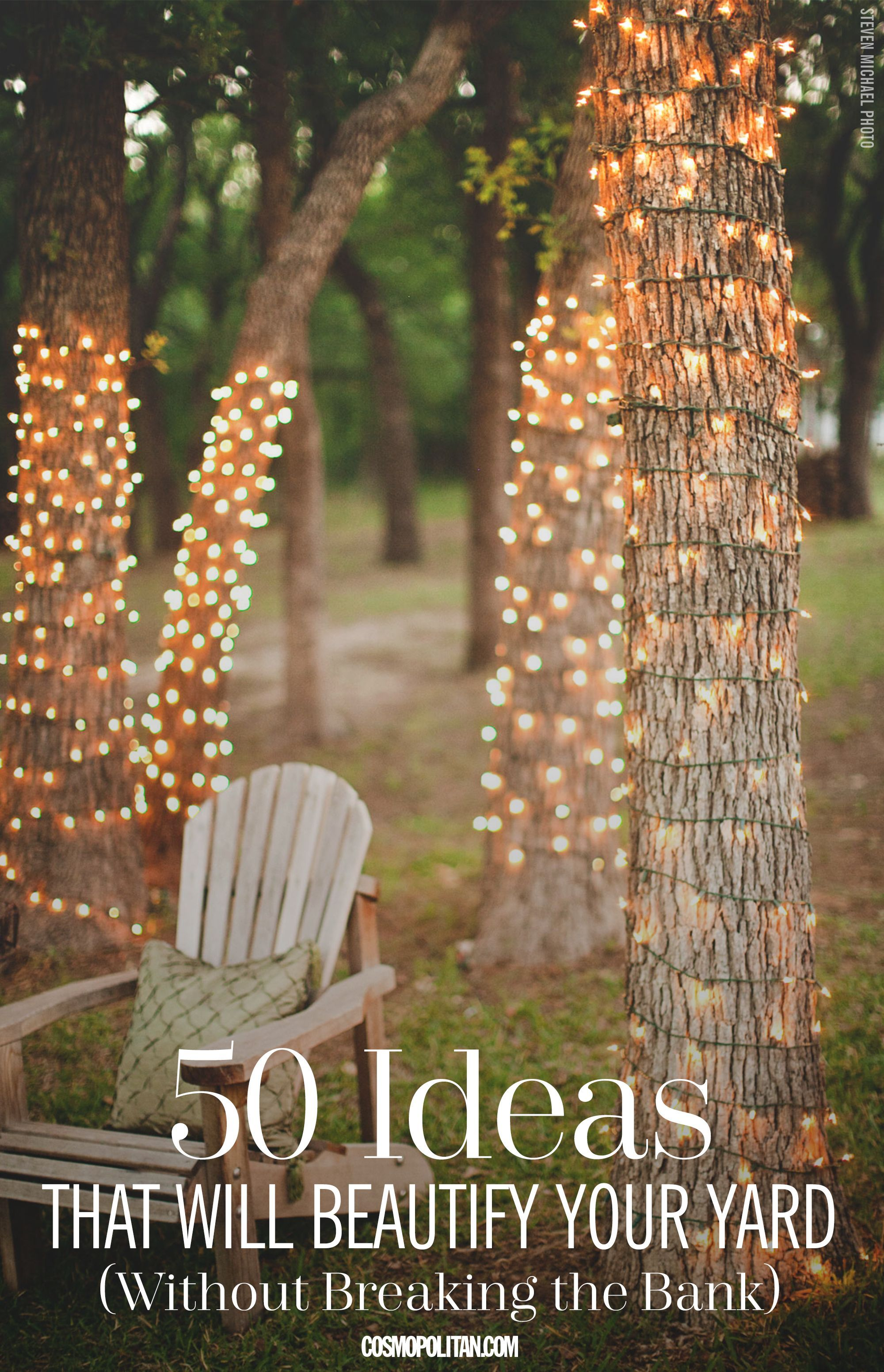 Photo of If you long for a more beautiful backyard space, but lack the funds to hire a la…