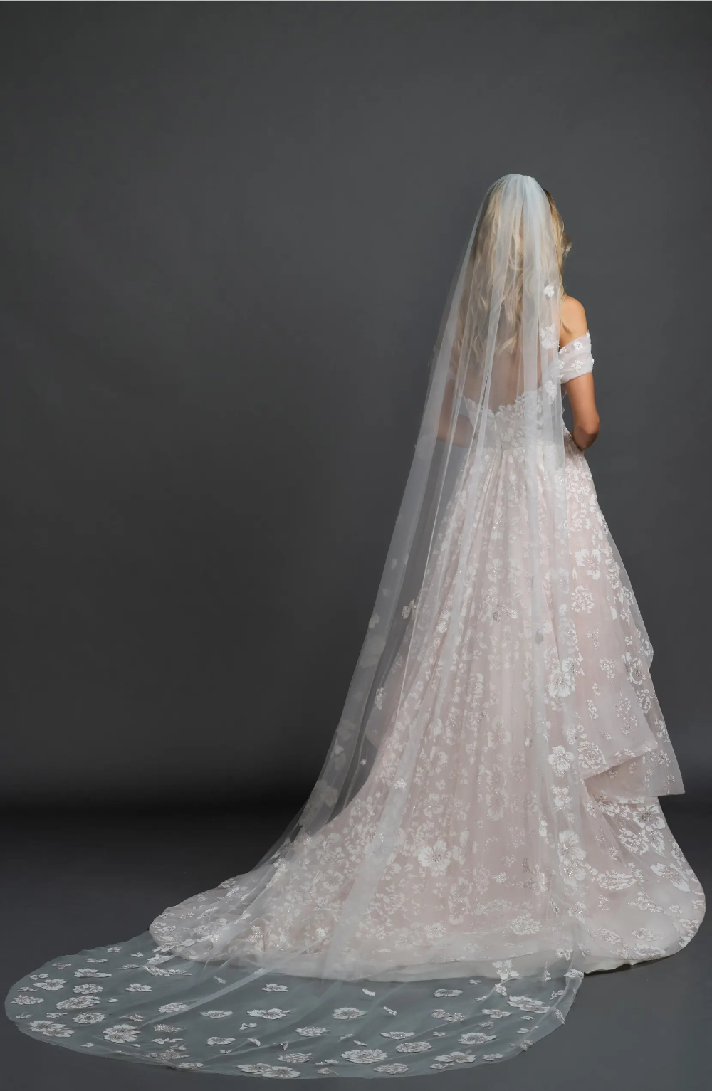The Best Wedding Veils For Every Bridal Style Green Wedding Shoes In 2021 Cathedral Veil Wedding Veils Bridal Style [ 1533 x 1000 Pixel ]