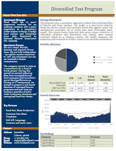Fund Fact Sheet Template   Twc    Template And Case