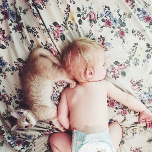 Cat Baby Baby Pictures Baby Kids Baby Sleep Problems