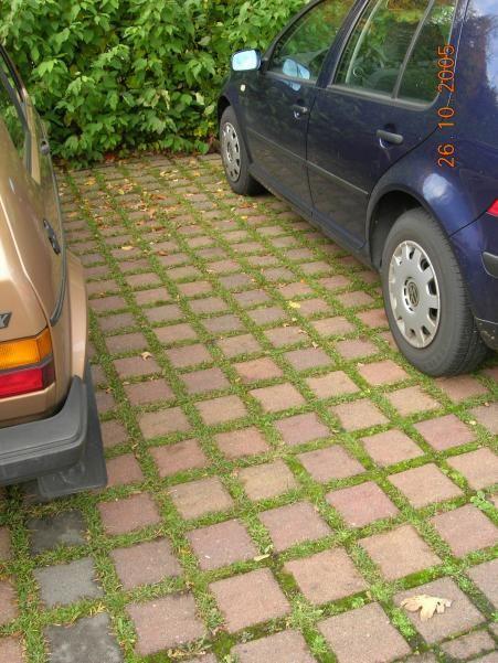 Adoquin ecol gico google search estacionamientos for Adoquin para estacionamiento