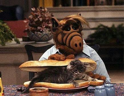 Bocata de felino y queso (Alf de Melmac)