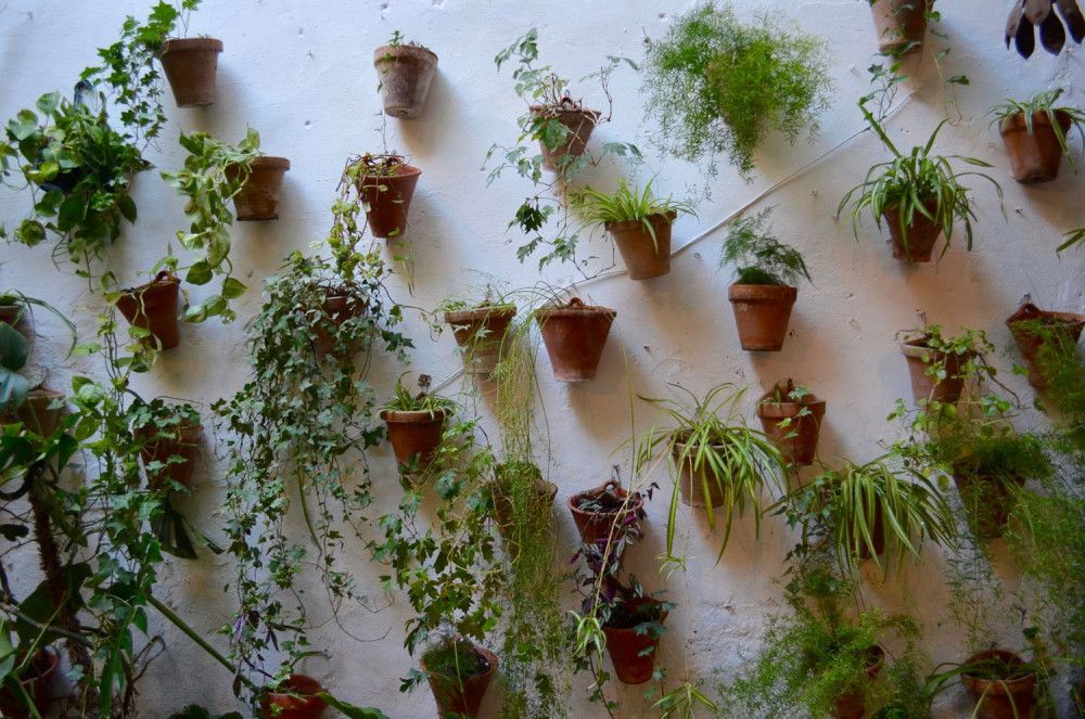 Casa Andalusi. Cordoba, España. via the Suitcase Lioness blog. Photo credit .:. Amy Lucas