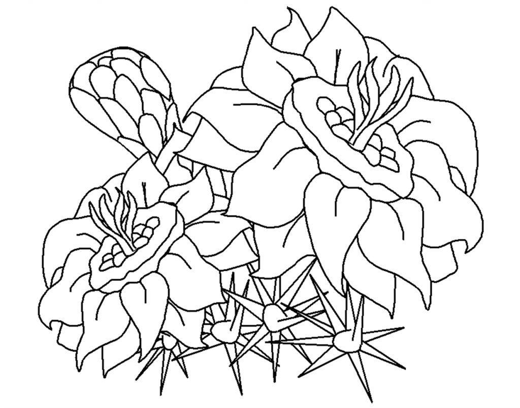Flower printable for coloring dibujos pa koloreo pinterest