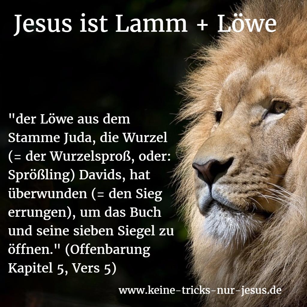 Jesus Löwe