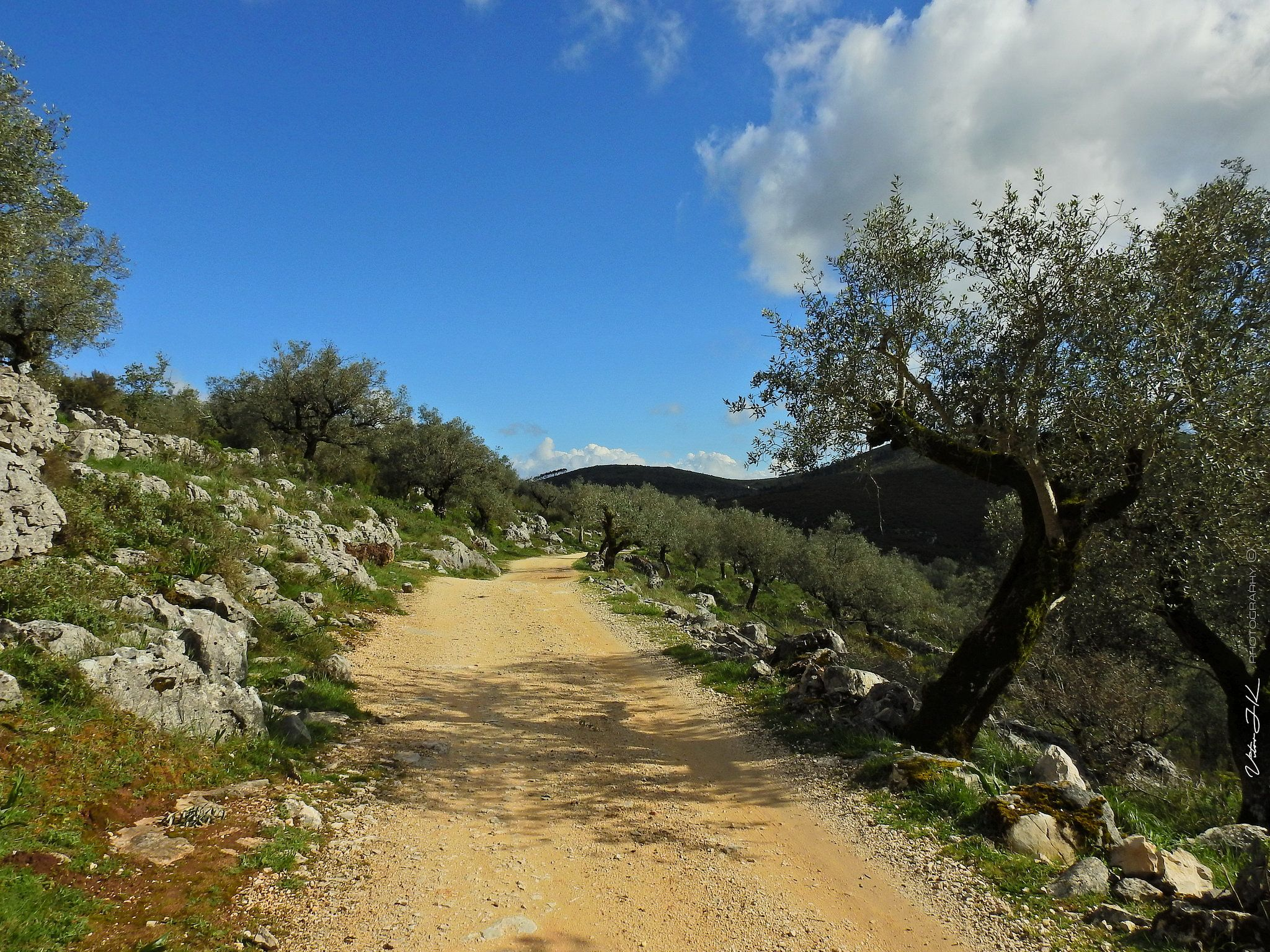 PhotoWalk at Casmilo n3318 Portugal travel, Country