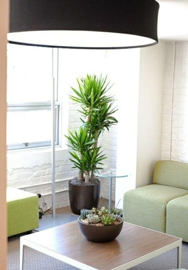 wohnzimmer yucca Pflanzen und Blumen Pinterest - pflanzen dekoration wohnzimmer
