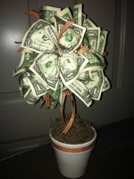 Money tree next time someone asks me if i think money grows on trees money tree next time someone asks me if i think money grows on trees negle Choice Image