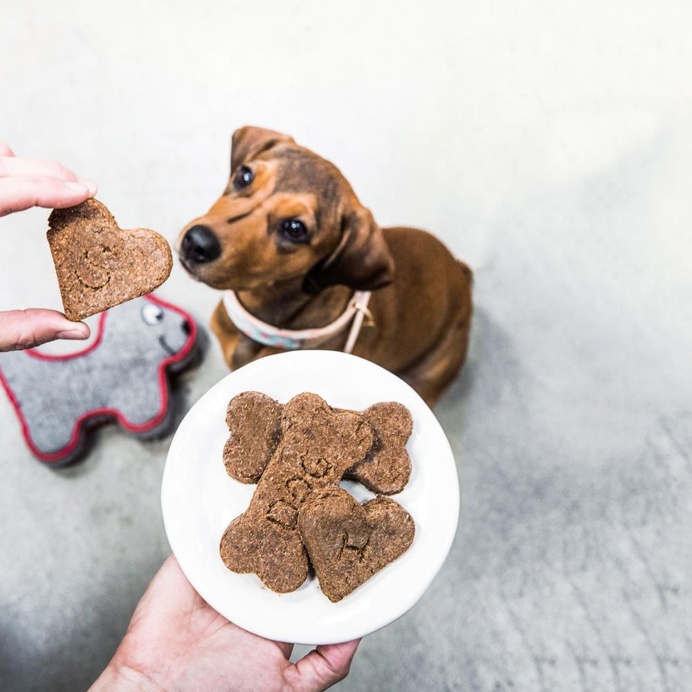 Your pooch deserves the best, right? So this Valentine's Day, whip up a batch of liver-flavored dough (remember—it's for the dog!) and personalize it with your pet's name or initials. Sunset reader Karen Byrne of San Rafael, California, originally shared this recipe in 1986; our canine testers still give it a big paws-up.