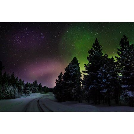 Aurora Borealis or Northern Lights Lapland Sweden Canvas Art - Panoramic Images (36 x 12)