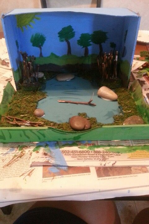 Shoebox pond diorama kids projects for school pond for Cool things to make out of a shoe box