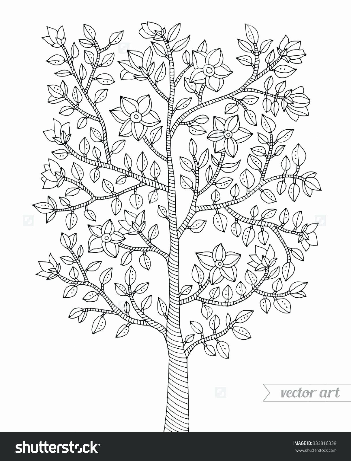 Tree Leaf Coloring Pages Unique Dollar Tree Coloring Pages