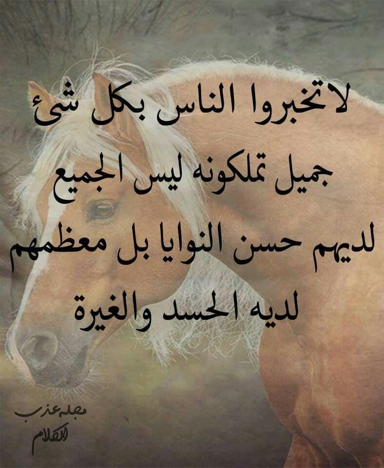 حقيقه Funny Pictures Quran Qoutes