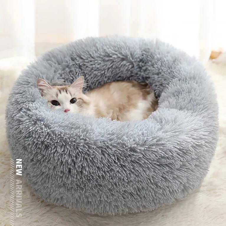 Rainbow Marshmallow Cat Bed Cats, Cute cats, Pretty cats
