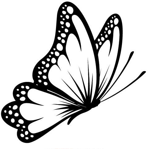 Simple Black Color Flying Butterfly Tattoo Design Butterfly Tattoo Designs White Butterfly Tattoo Tribal Butterfly Tattoo
