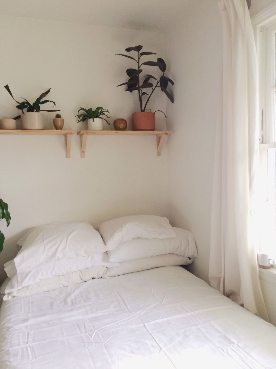 Shelves With Plants Bungalow Home Decor Tumblr Rooms Bedroom
