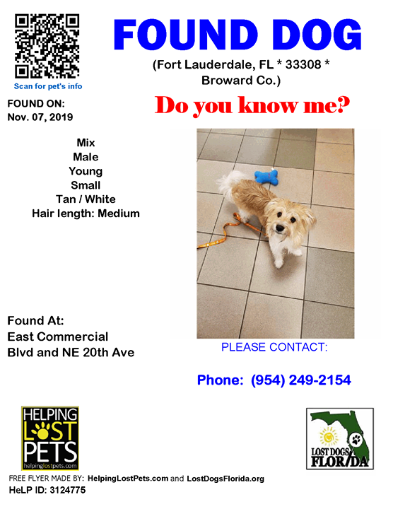 FOUND DOG Is this your lost dog? Do you know this Dog?