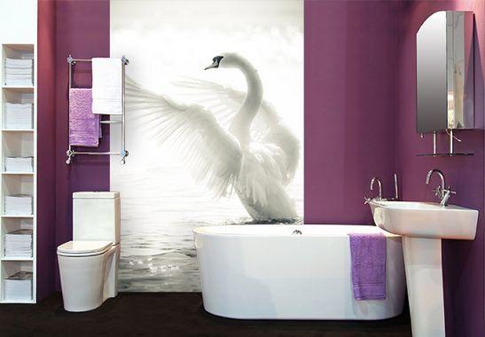 Fototapete - Fototapete Majestätischer Schwan tapete Pinterest - fototapete für badezimmer