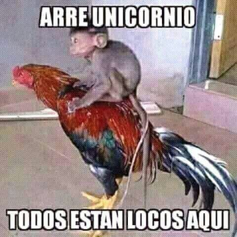 Pin By Alejandro Guardado On Memes Chingones Monkey Memes Spanish Memes Humor