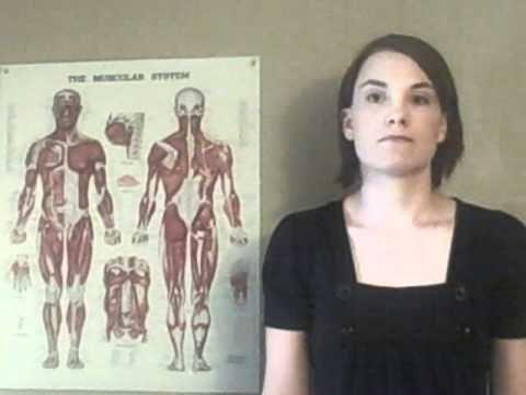 Xxx Sissy brainwash hypnosis free videos watch download